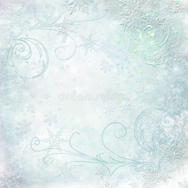 圣诞节贺卡-在轻的背景的不同的雪花 库存图片