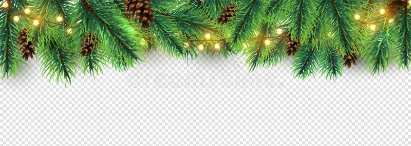 圣诞节边界 透明背景中突显的假日花园 矢量圣诞树树枝,灯和锥 库存例证