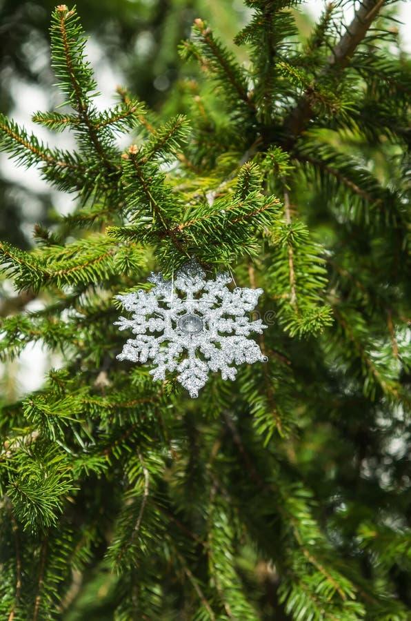 圣诞节雪花! 库存图片
