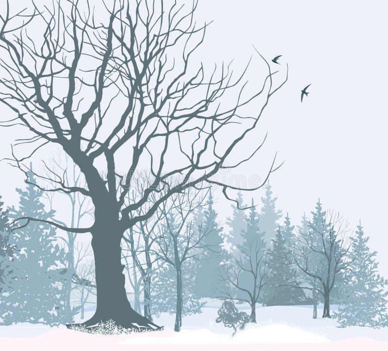 圣诞节雪风景墙纸 斯诺伊森林背景 库存例证