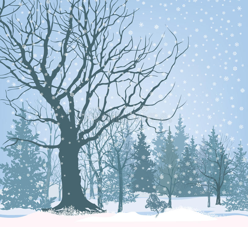 圣诞节雪风景墙纸 斯诺伊森林背景 Tre 库存例证