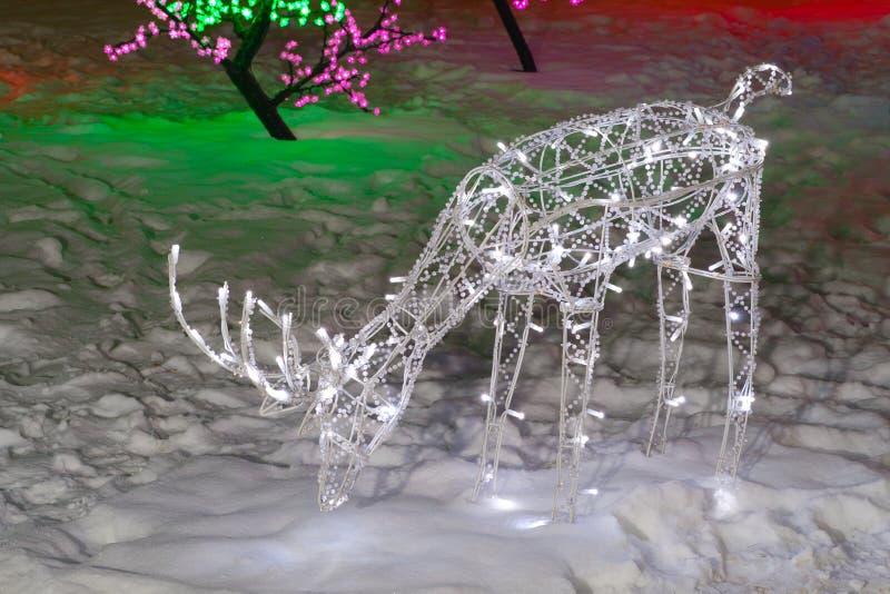 圣诞节鹿 图库摄影