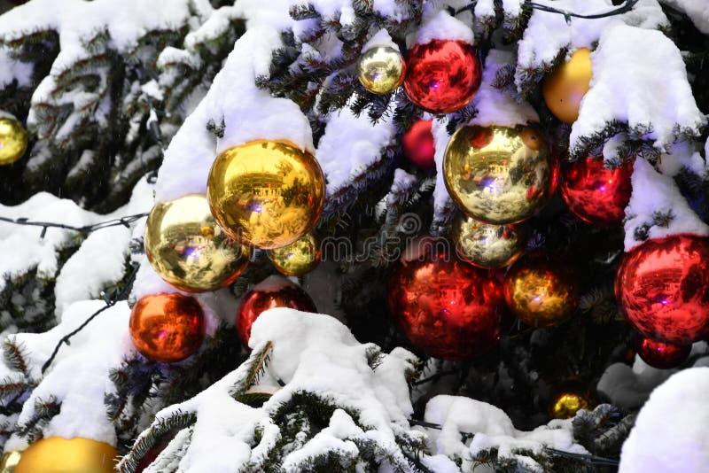圣诞节Xmas树球细节关闭在雪下 免版税图库摄影
