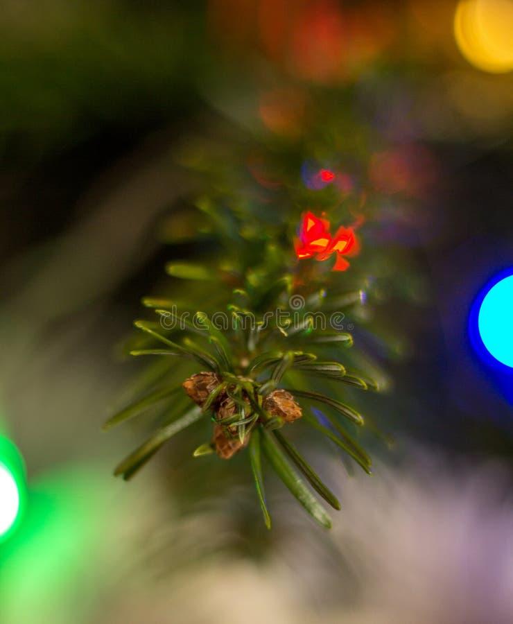 圣诞装饰,小丑圣诞节球 免版税库存图片
