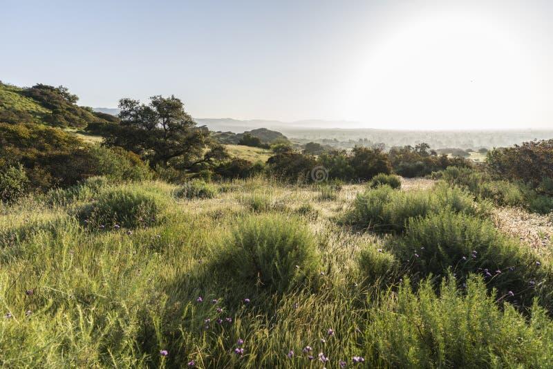 圣费尔南多谷草甸在洛杉矶加利福尼亚 库存照片