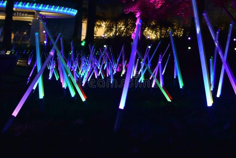 圣路易斯,密苏里,美国- 2017年11月22日:密苏里植物园光在晚上 免版税库存照片
