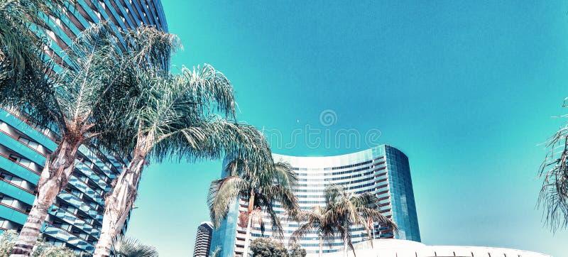 圣迭戈小游艇船坞大厦和地平线在一个美好的夏日 库存照片