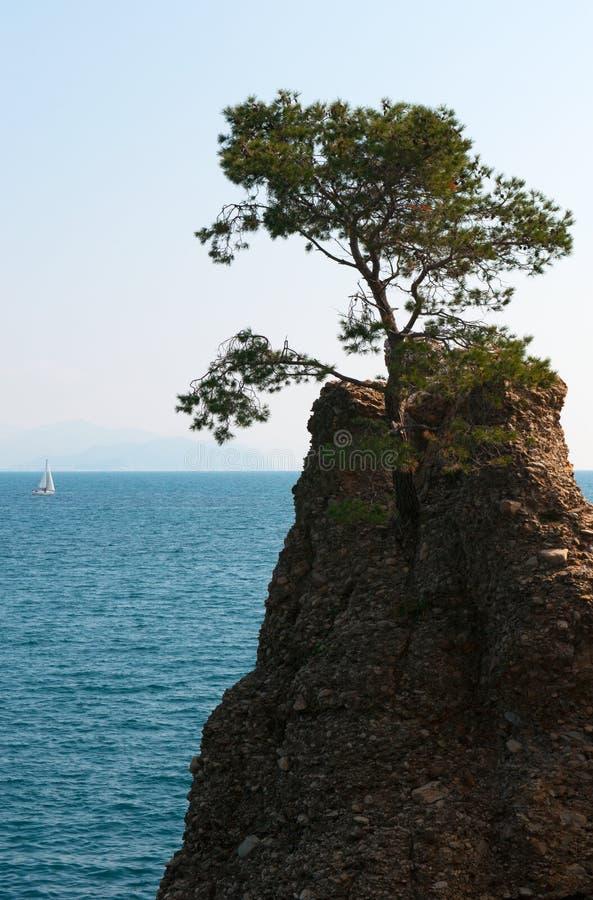 圣马尔盖里塔利古雷,热那亚,利古里亚,意大利,意大利语里维埃拉,欧洲 库存图片