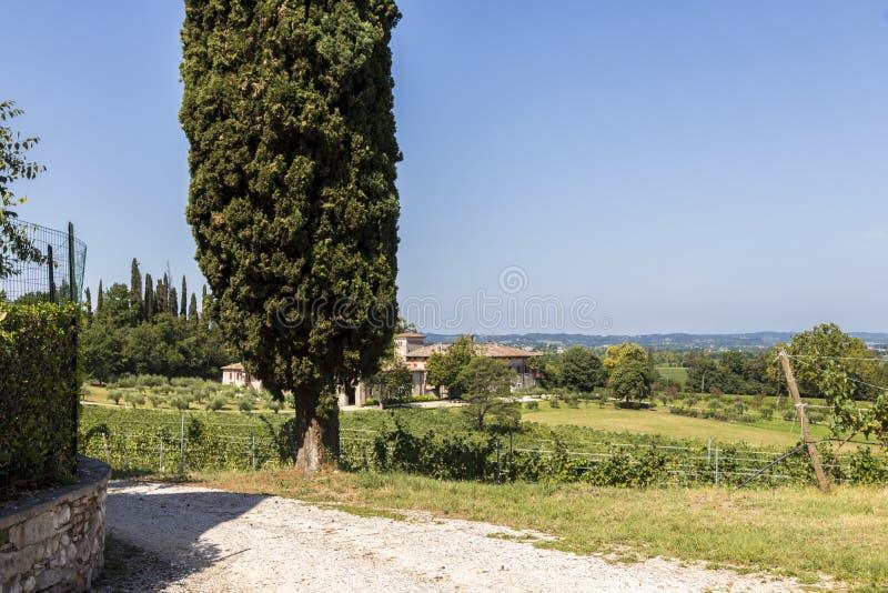 圣马蒂诺della巴塔利亚,意大利 库存照片