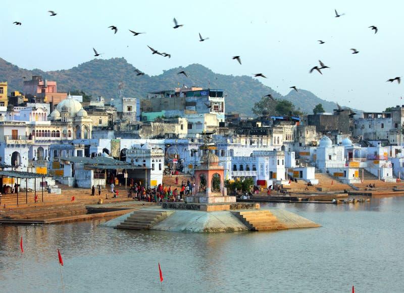 圣洁湖在普斯赫卡尔印度 免版税库存图片