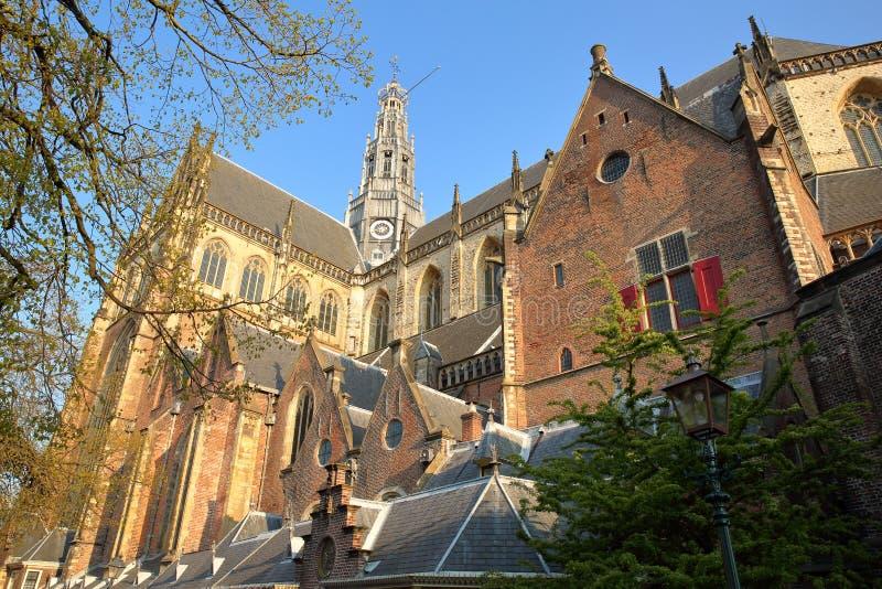 圣Bavokerk教会华丽和五颜六色的建筑学有雕刻的在哈莱姆 免版税图库摄影