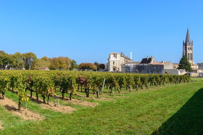 圣Emilion村庄的,法国葡萄园 免版税库存照片