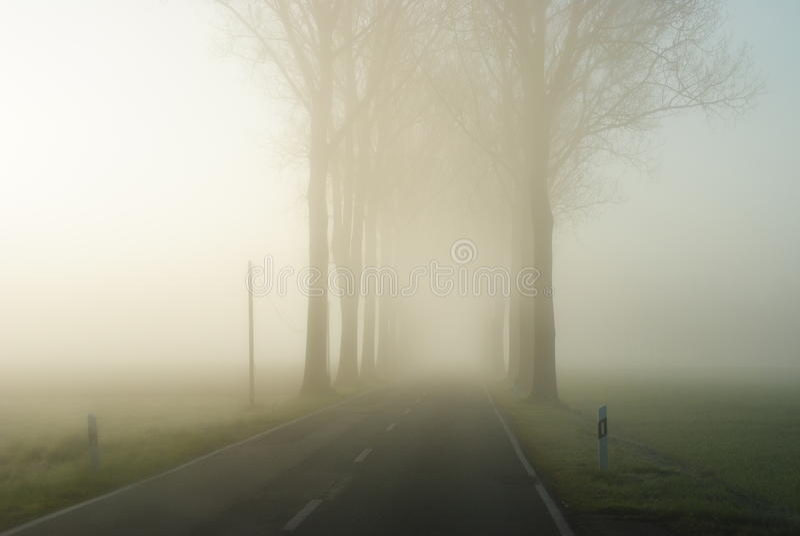 在一个不尽的农村风景的乡下公路与光秃的树行  免版税库存照片