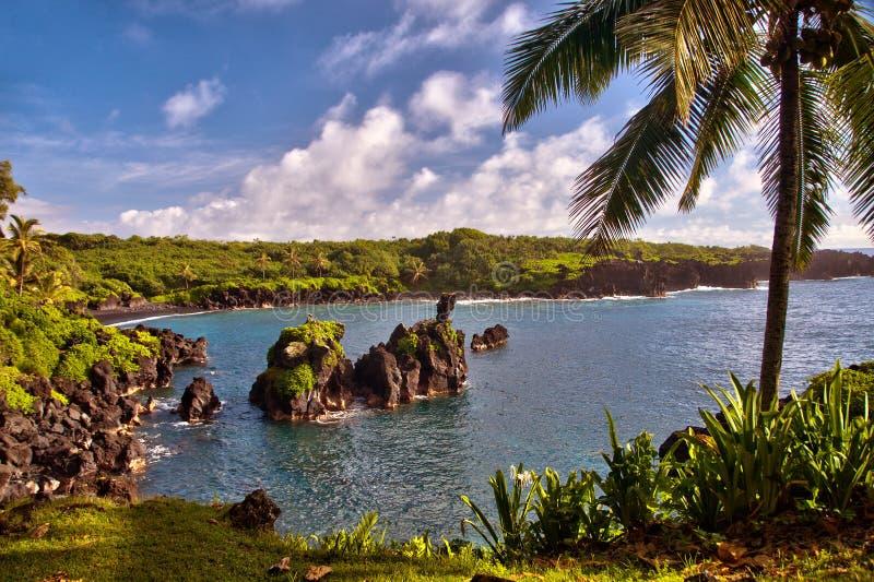 在一个偏僻的夏威夷小海湾的早晨在毛伊海岛上  库存照片