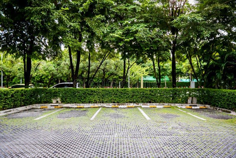 在一个停车场的空的空间与花落 有左墙壁的停放的汽车 停车道室外在公园 库存照片