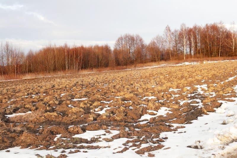 在一个光秃的森林的边缘的一个被犁的春天领域野外工作的季节的初期 农业的和工业的农厂事务 雪 免版税库存照片