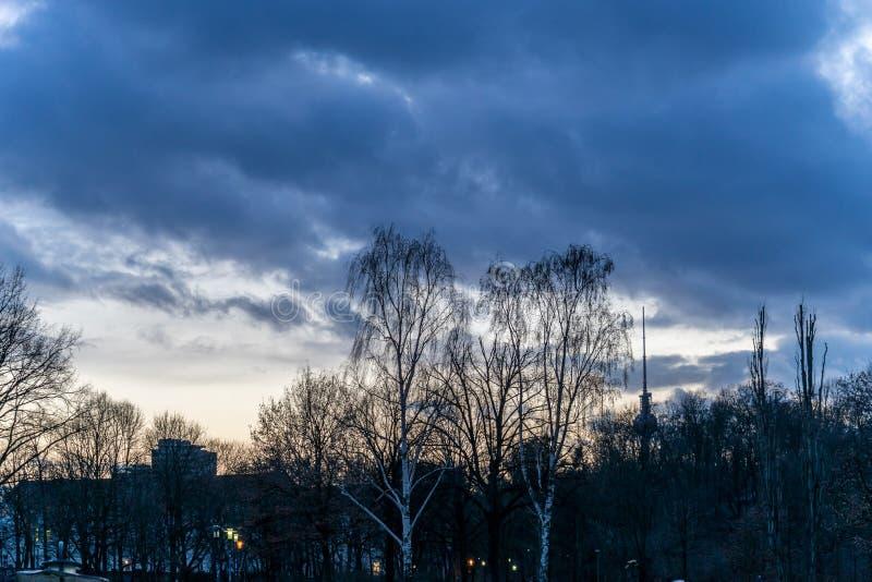 在一个公园的日落,在柏林 免版税库存照片