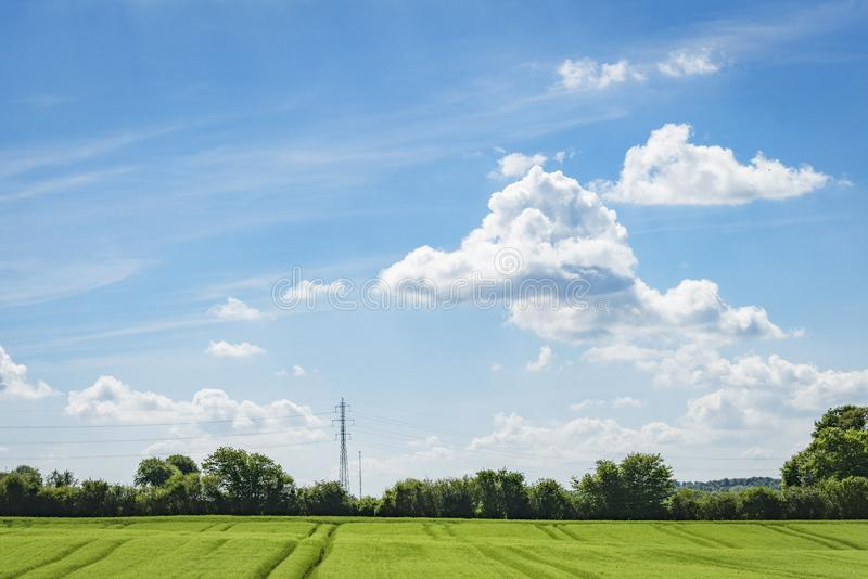 在一个农村乡下风景的绿色领域 库存照片