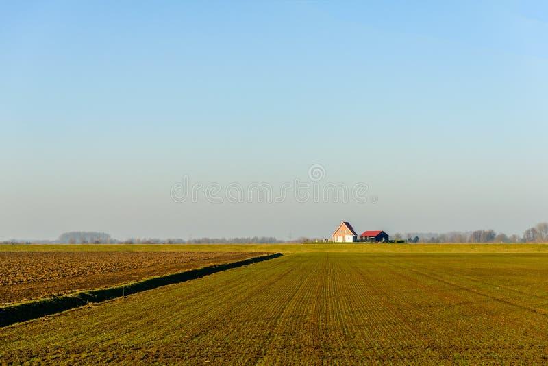 在一个农村风景的全景在一个新制造的开拓地 免版税库存图片