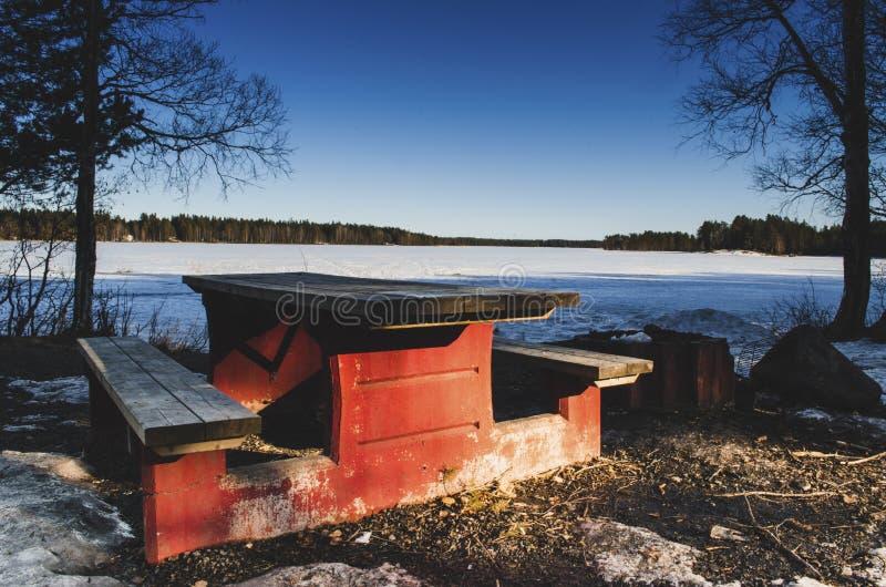 在一个冻湖前面的长木凳有桦树松树的在附近,当垂悬从天空蔚蓝时的分支 库存图片