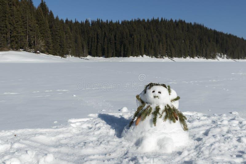 在一个冻湖的母雪人和在一座山的美好的多雪的场面与杉木森林 免版税库存图片