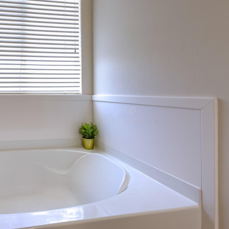 在一个卫生间里面的正方形闪烁的白色浴缸有在墙壁上的一个大镜子的 库存图片