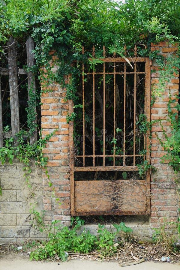 在一个古老砖和石墙的生锈的铁门长满与叶子 免版税图库摄影