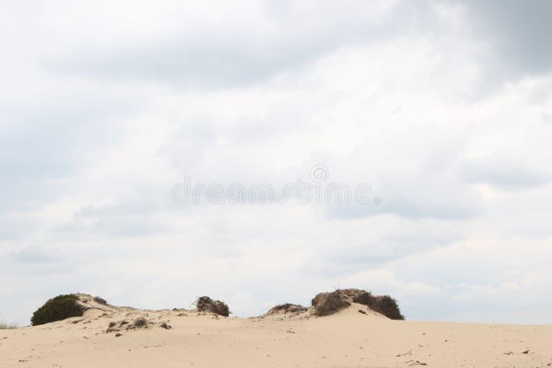 在一个含沙沙丘外缘的多云天空 库存图片