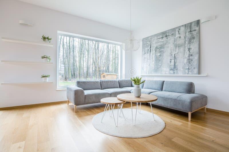 在一个圆的地毯安置的两张簪子桌在白色客厅我 免版税库存图片