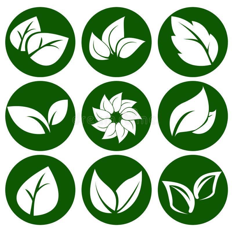 在一个圆的绿色按钮的白色叶子 eco和生物商标的元素 也corel凹道例证图片