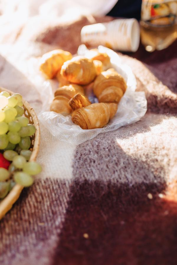 在一个地毯的夏天野餐用果子、酒和茶、杯子、新月形面包和甜点细节 免版税库存图片