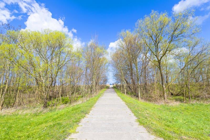 在一个堤坝的边路在波罗的海 库存照片