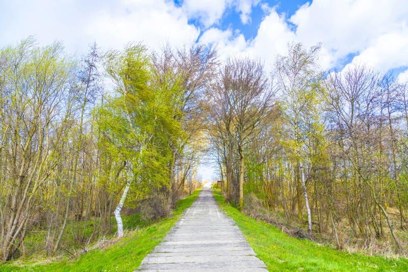 在一个堤坝的边路在波罗的海 免版税库存图片