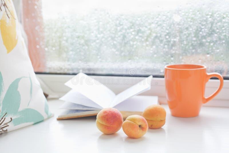 在一个多雨夏日舒适的浪漫集合读的 免版税图库摄影
