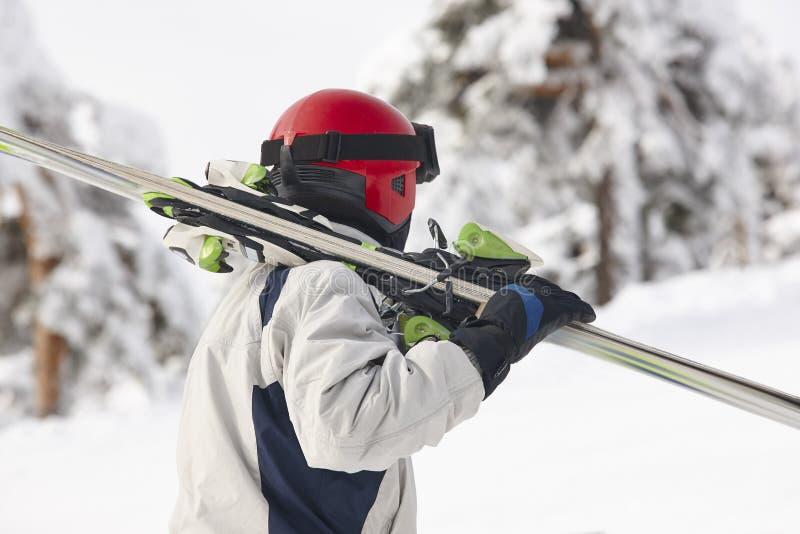 在一个多雪的森林风景的滑雪者运载的滑雪 冬天 免版税库存图片