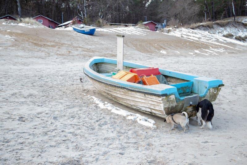在一个多雪的海滩的一个渔船 免版税库存图片