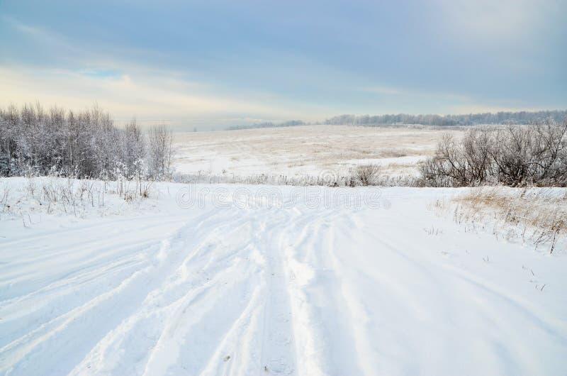 在一个多雪的领域的偏僻的路通过森林 免版税图库摄影