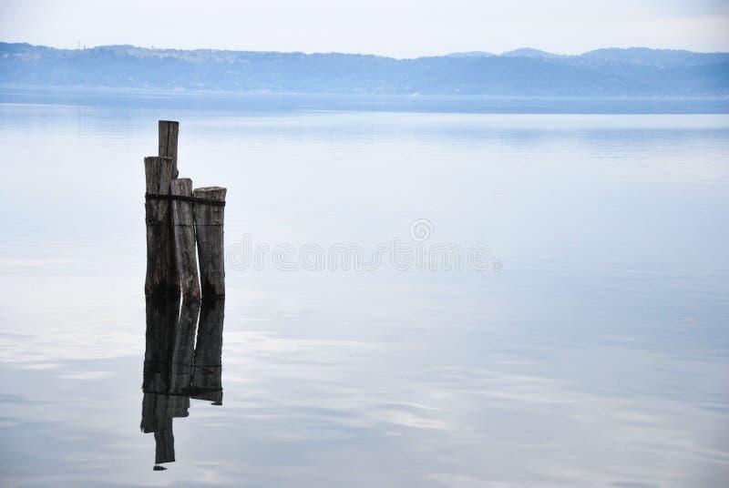 在一个安静的湖中间的老木岗位 免版税库存图片