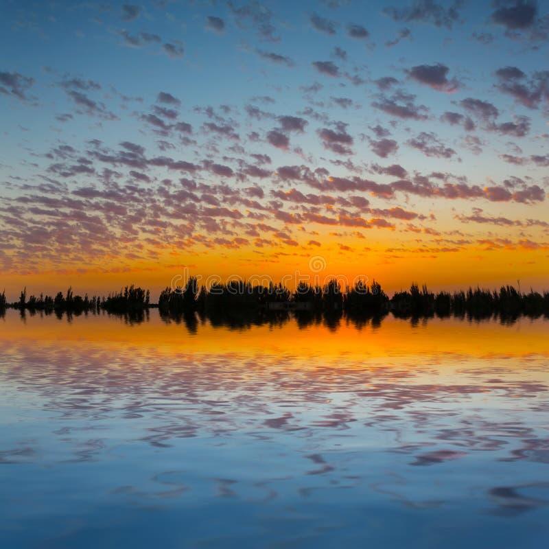 在一个安静的湖的日落 库存图片