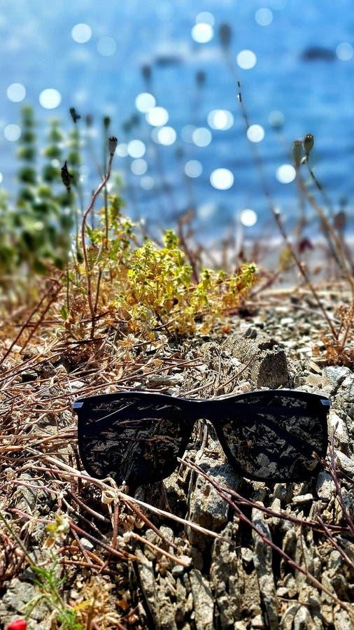在一个岩石的太阳镜在海附近 免版税库存照片