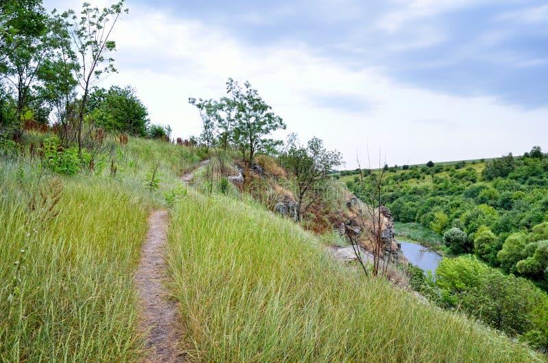 在一个峡谷的绿色树反对多云天空背景 免版税库存图片