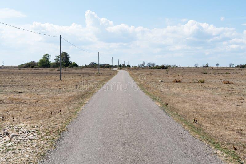 在一个干燥风景的狭窄的乡下公路 库存图片