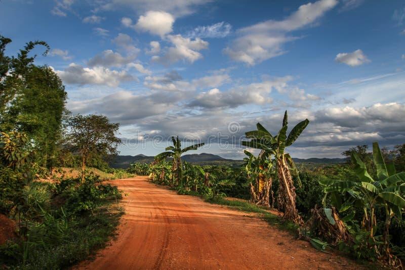 在一个惊人的风景中间的热带和异乎寻常的红土带路与完善的光 免版税图库摄影