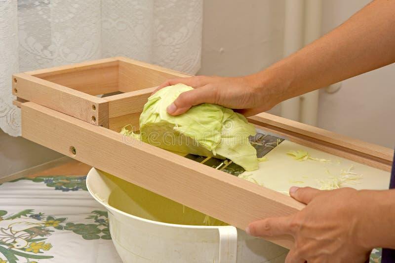 在一个手扶的机器的切口圆白菜 免版税图库摄影