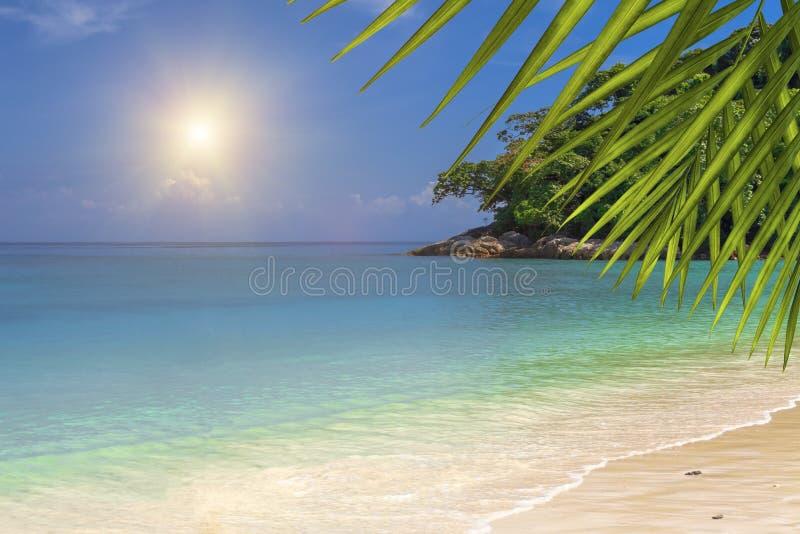 在一个无人居住的海岛上的热带海滩 背景 免版税库存图片