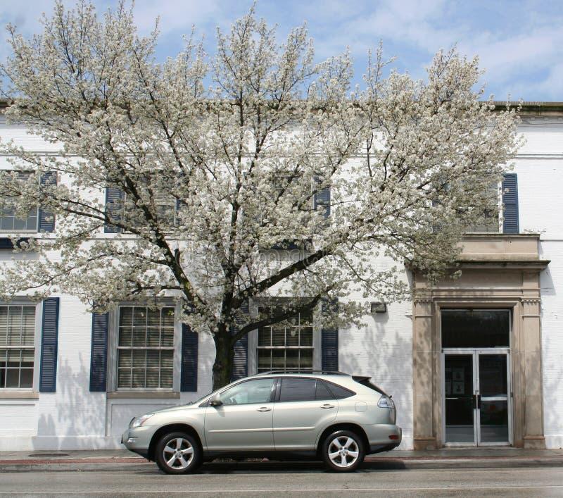 在一个春日的被日光照射了suv 免版税图库摄影