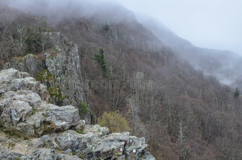 在一个有雾的春日期间,蓝岭山脉的看法小的石人山的俯视远足山顶 光秃的树, 免版税库存图片