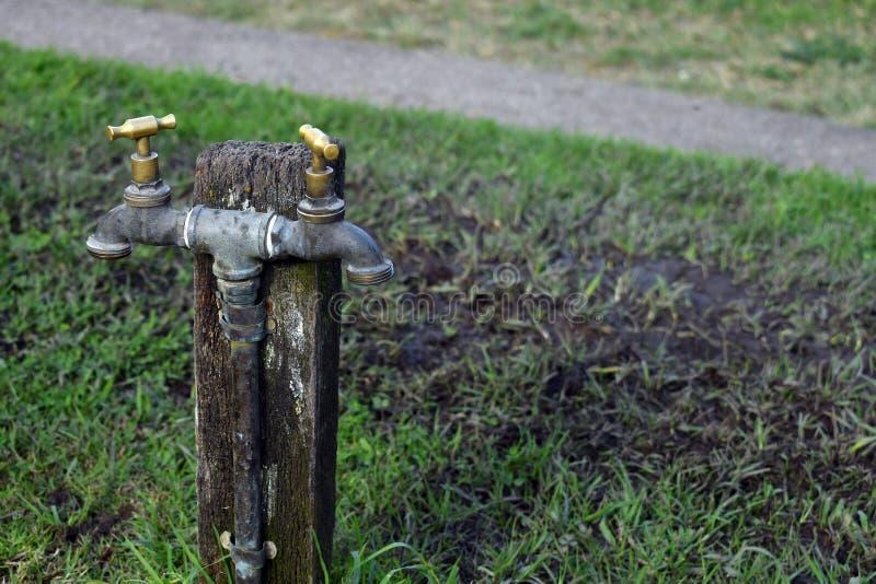 在一个木岗位的双重朝向的轻拍在公园 库存照片