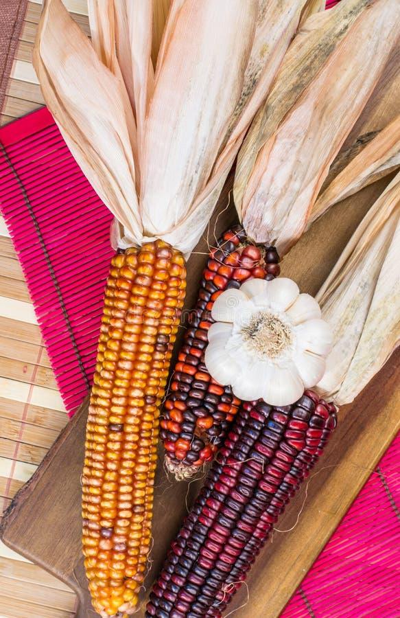 在一个木板的三个玉米的构成和大蒜 免版税库存照片
