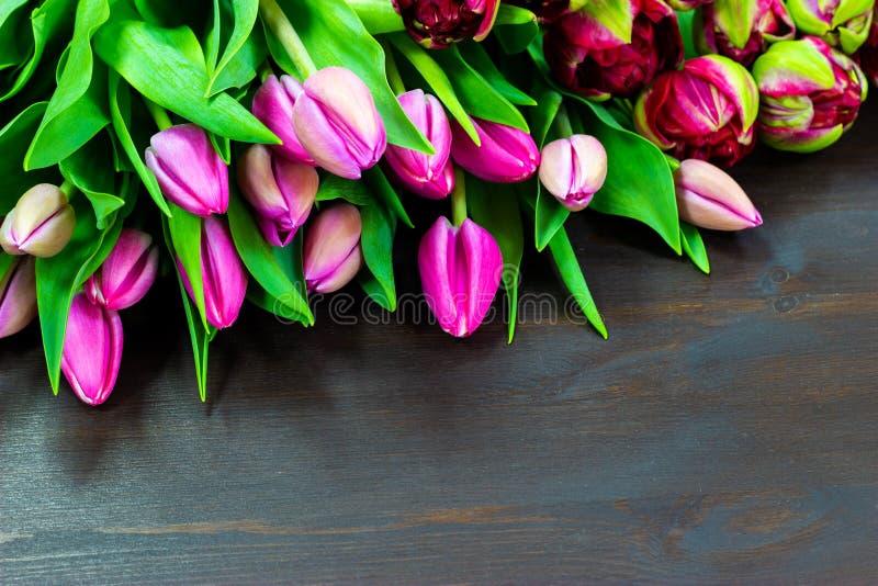 在一个木桌自由空间的桃红色郁金香文本的 免版税库存照片